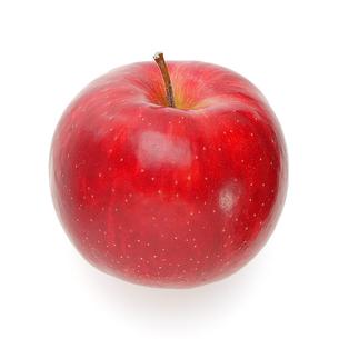 リンゴ APPLEの写真素材 [FYI00178190]