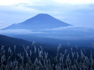 富士山とススキの素材 [FYI00178217]