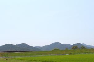 土手 水田の写真素材 [FYI00178289]