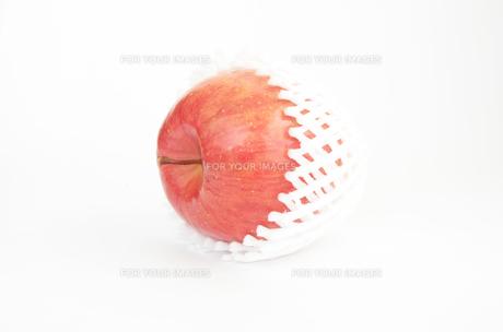 リンゴの写真素材 [FYI00178855]