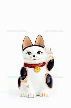 招き猫の写真素材 [FYI00178860]