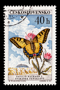 切手の写真素材 [FYI00178870]