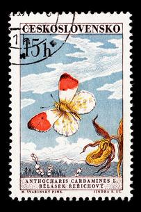 切手の写真素材 [FYI00178872]