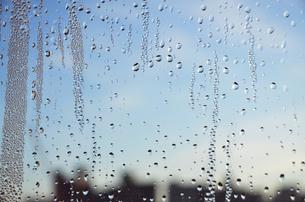 窓の写真素材 [FYI00178904]