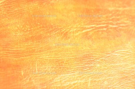 革の写真素材 [FYI00178994]