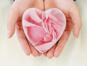 ハートのお守り(手のひらの上のピンクの薔薇の柄)の写真素材 [FYI00179773]
