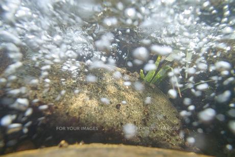 水の中 早瀬の写真素材 [FYI00179928]