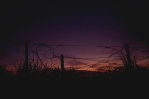 有刺鉄線と夕焼けの写真素材 [FYI00179960]