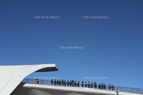 青空の下で並んで応援の写真素材 [FYI00180110]