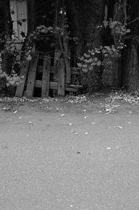 路の写真素材 [FYI00180303]
