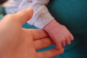 小さな手の写真素材 [FYI00180329]