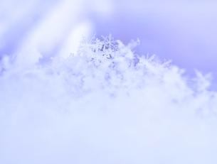 ハート形に積もった雪の写真素材 [FYI00180400]