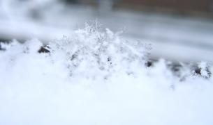 ふんわり積もった雪の素材 [FYI00180418]