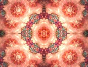 オレンジの花 万華鏡の写真素材 [FYI00180460]