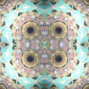 パステルカラー 万華鏡の写真素材 [FYI00180465]