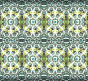 黄緑色花柄パターンの写真素材 [FYI00180488]