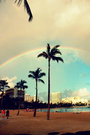 ワイキキビーチのヤシの木と虹の素材 [FYI00180896]