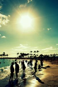 ワイキキビーチで遊ぶ人々の素材 [FYI00180906]