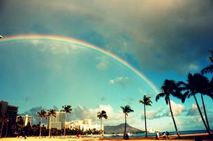 ヤシの木々とダイヤモンドヘッドにかかる虹の写真素材 [FYI00180917]