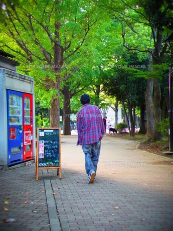 男性の後ろ姿と公園の写真素材 [FYI00180973]
