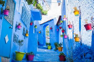 モロッコ シャウエンの街並みの素材 [FYI00180974]