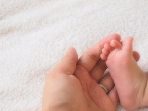 生後1ヶ月半の赤ちゃんの足とママの手の写真素材 [FYI00181005]