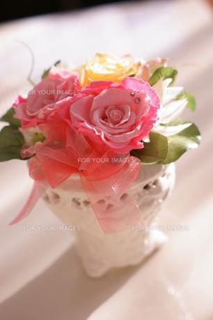 *おしゃれな薔薇*の写真素材 [FYI00181052]