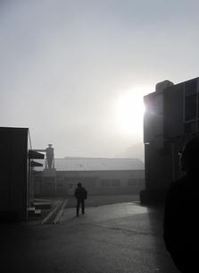 朝霧の素材 [FYI00181107]