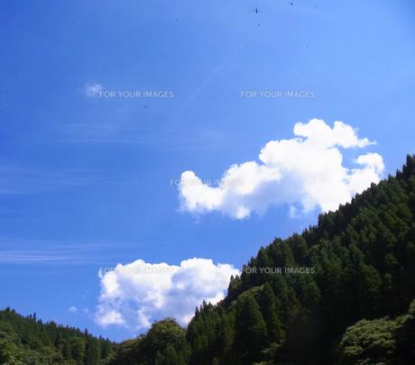 夏の空の素材 [FYI00181131]
