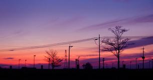 夕焼けの空の素材 [FYI00181132]