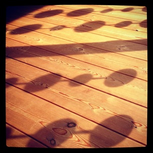 木材の床と影の写真素材 [FYI00181177]