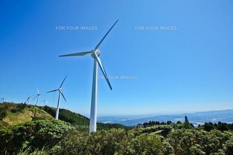 風車の写真素材 [FYI00181314]