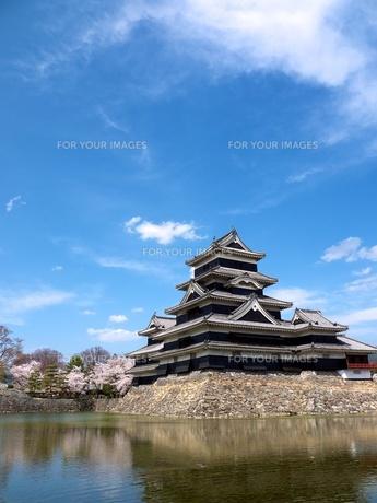 松本城の写真素材 [FYI00181367]