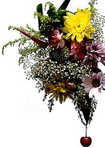 flowerの写真素材 [FYI00181664]
