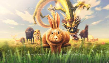 十二支全員集合 ウサギの写真素材 [FYI00181729]