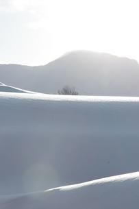 雪の駒が岳の写真素材 [FYI00182015]