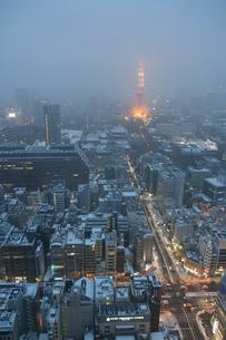 雪の日の東京タワーの写真素材 [FYI00186035]