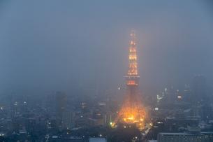 雪の日の東京タワーの写真素材 [FYI00186043]