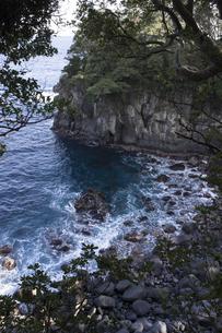 城ヶ崎海岸の写真素材 [FYI00186045]