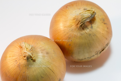 二個の玉ねぎのハイアングルの写真素材 [FYI00186128]