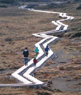 乗鞍岳の木道もようの写真素材 [FYI00186356]