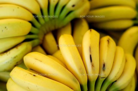 市場のバナナの写真素材 [FYI00186533]