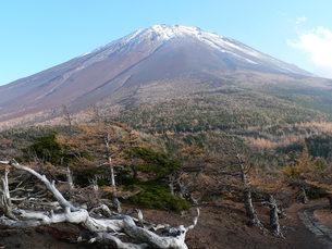 富士山五合目奥庭自然公園の写真素材 [FYI00186671]