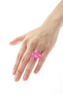 結婚指輪の写真素材 [FYI00186795]