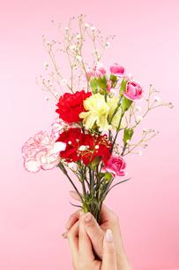 花束の写真素材 [FYI00186827]