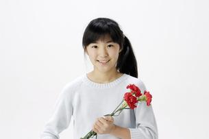 女の子とカーネーションの写真素材 [FYI00186922]