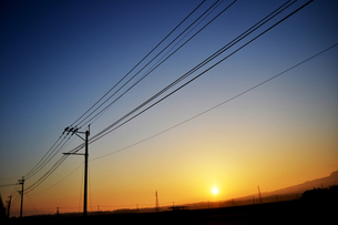 電線と朝日の素材 [FYI00186936]