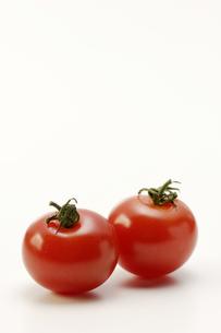 プチトマトの写真素材 [FYI00187046]