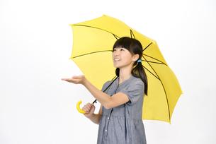 傘をさす小学生の女の子の写真素材 [FYI00187091]