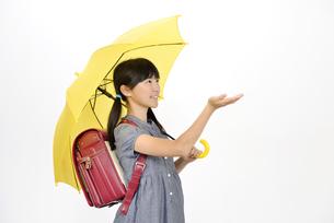 傘をさす小学生の女の子の写真素材 [FYI00187120]